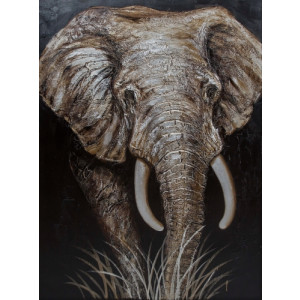 The big elephant 160 x 120
